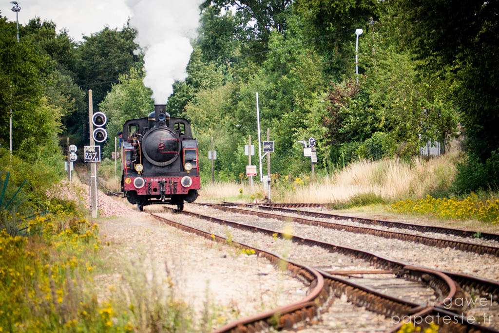 Tchou Tchou - Train Vapeur
